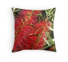 Callistemon in Red Throw Pillow