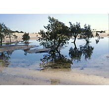Stockton Bight Sand Dunes by Bernadette Smith (c) Photographic Print