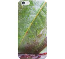 Water droplet close up iPhone Case/Skin