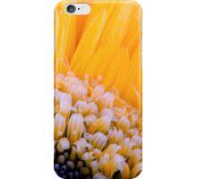 Gerbera Macro iPhone Case/Skin
