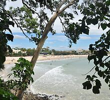 Noosa Main Beach by mbutwell