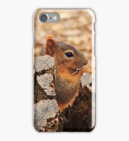 Snacking Squirrel iPhone Case/Skin