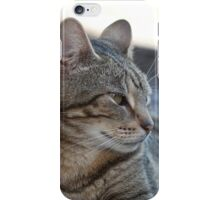 Rosy - our neighbour's cat  iPhone Case/Skin