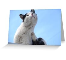 Ooooh ~ That's The Spot! Greeting Card