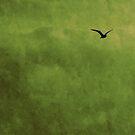 L'oiseau by Anne Staub