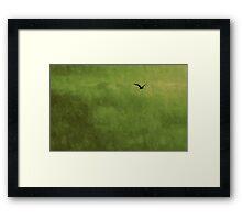 L'oiseau Framed Print