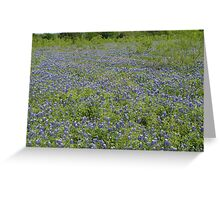 blue carpet Greeting Card