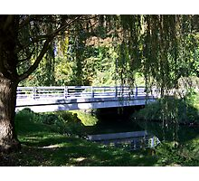 Willow Tree Bridge Photographic Print