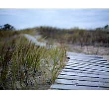 Dune Boardwalk Photographic Print