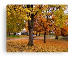 November On The Sherry Canvas Print
