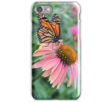 Butterfly on a Daisy iPhone Case/Skin