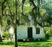 Slave Cabin - Magnolia Plantation by Mary Campbell