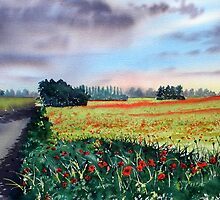 Poppies on Forty Acres Farm near Easingwold by Glenn Marshall
