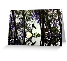 Hummingbird Silhouette Reflection Greeting Card