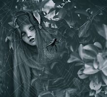 The Web by Ivy Izzard