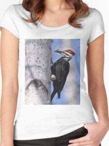 Male Pileated Woodpecker - Ottawa, Ontario Women's Fitted Scoop T-Shirt