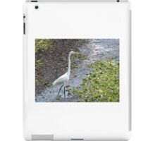 Egret bird iPad Case/Skin