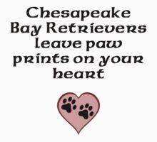 Chesapeake Bay Retrievers Leave Paw Prints On Your Heart Kids Clothes