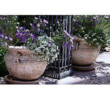 Dueling Pots Photographic Print