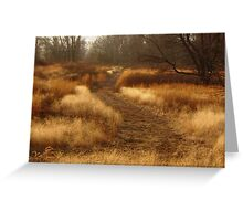 Shades Of Fall Greeting Card