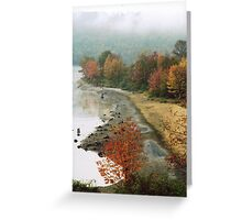 Fall Fog  Greeting Card