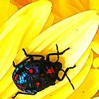 Smelly Bug by grarbaleg
