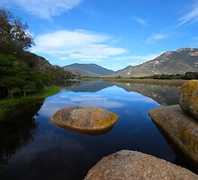 Tidal River by Laurette Ruys