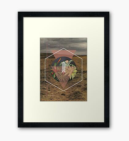 Desert Plants Framed Print