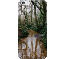Stoke Hill iPhone Case/Skin