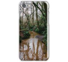Stoke Hill iPhone Case/Skin