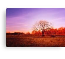 Eve of November Canvas Print