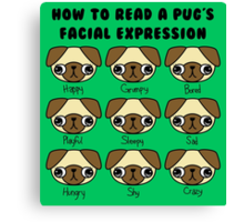 The many facial expressions of a pug Canvas Print