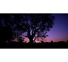 Thursday Sunset Photographic Print