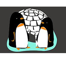 The Two Penguins Photographic Print