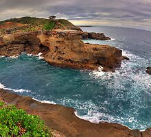 Munmorah State Conservation Area by Steve D