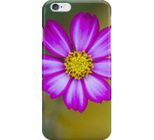 Bright Pink flower autumn iPhone Case/Skin