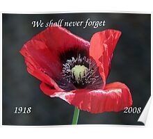 Remembrance Day 1918 - 2008 Poster