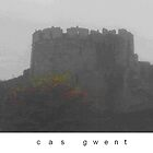 cas gwent by John1959