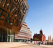 Millennium Centre, Cardiff Bay by Paul Woloschuk
