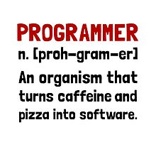 Programmer Definition by AmazingMart