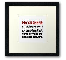 Programmer Definition Framed Print