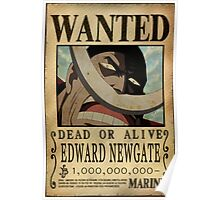 Wanted Whitebeard - One Piece Poster
