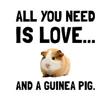Love And A Guinea Pig Photographic Print