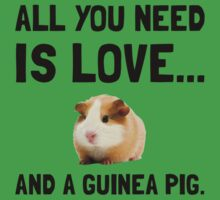 Love And A Guinea Pig Kids Clothes