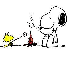 Snoopy and Woodstock Marshmallow Photographic Print