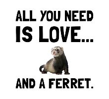 Love And A Ferret Photographic Print