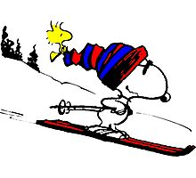 Snoopy on snow Photographic Print