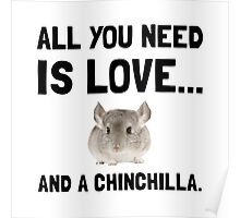 Love And A Chinchilla Poster