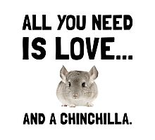 Love And A Chinchilla Photographic Print