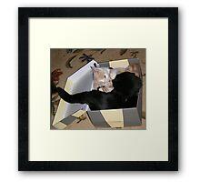 Box Fighting Wild Bill Hickock kitten and Matilda Framed Print
